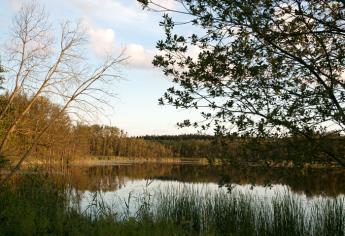 IX_6_Herbstsee